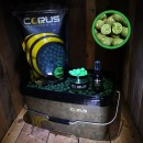 1kg Corus Green Lip Mussel Bait Bucket Deal