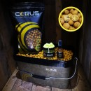 1kg Corus Scopex Cream Bait Bucket Deal